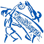 logo volleyscrivia 2
